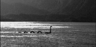 Loch Ness Serpant