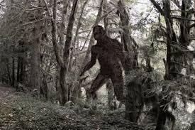 Yowie Monster