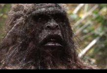 Yowie Creature